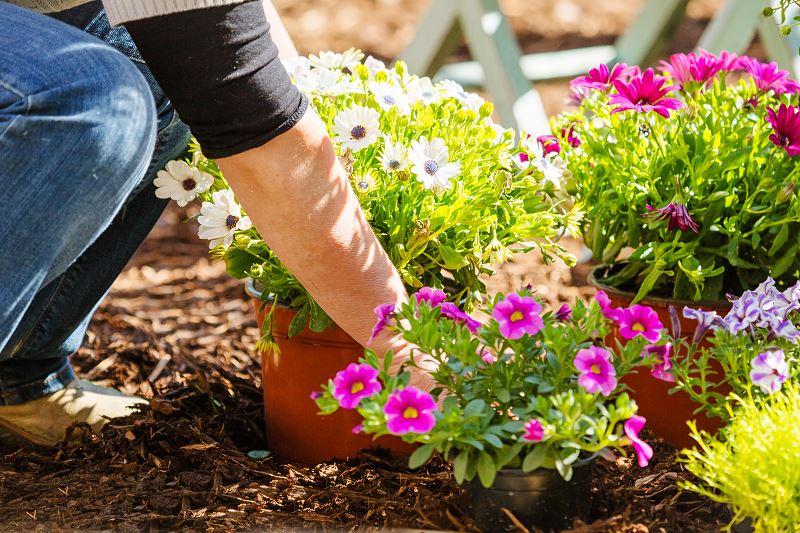 Ile kosztuje urządzenie i aranżacja ogrodu? 2