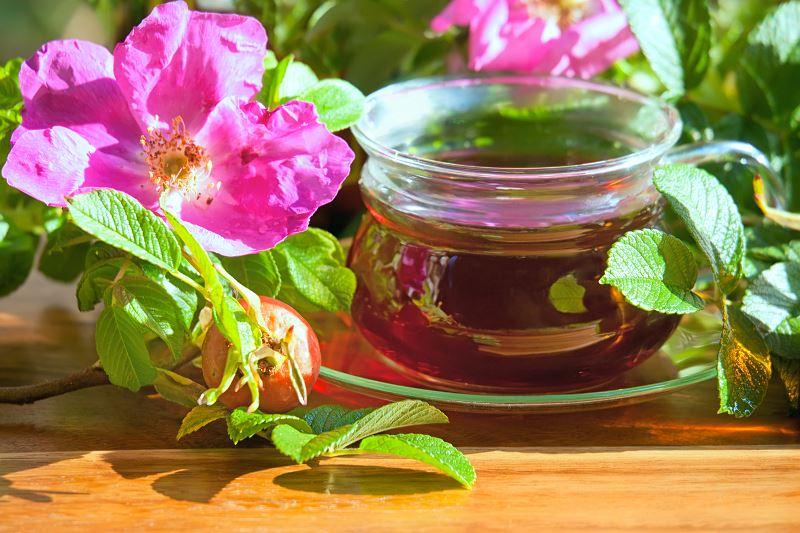 Herbata z dzikiej róży - właściwości, przygotowanie, działanie 2