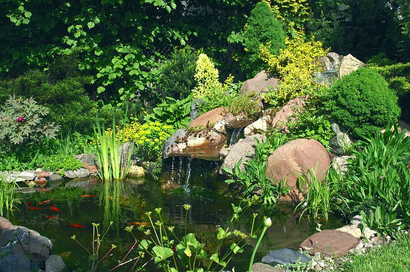 Skalniaki przed domem i w ogrodzie - pomysły, inspiracje, zdjęcia 3