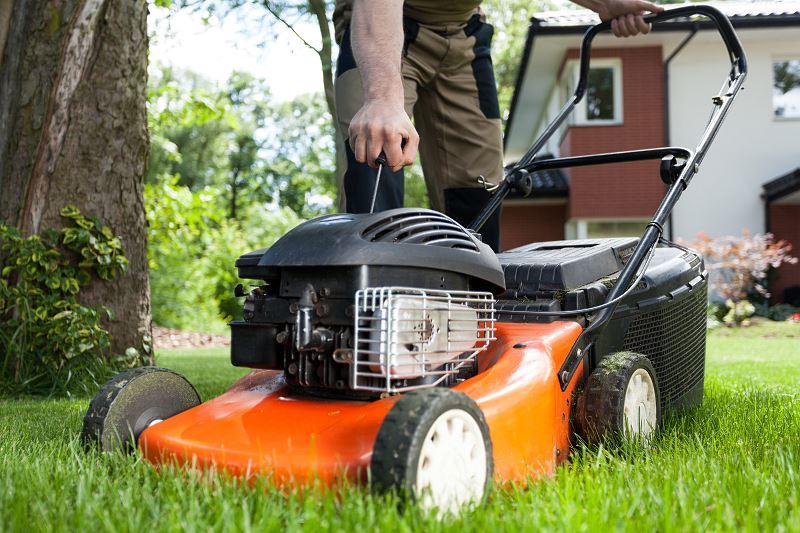 Kosiarka do trawy - spalinowa czy elektryczna? Sprawdzamy zalety i wady 2