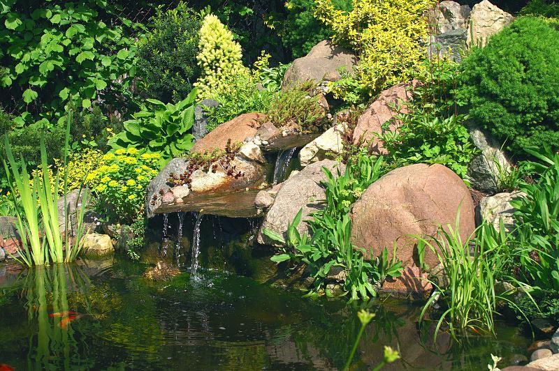 Jak zrobić własne oczko wodne w ogrodzie krok po kroku? 2