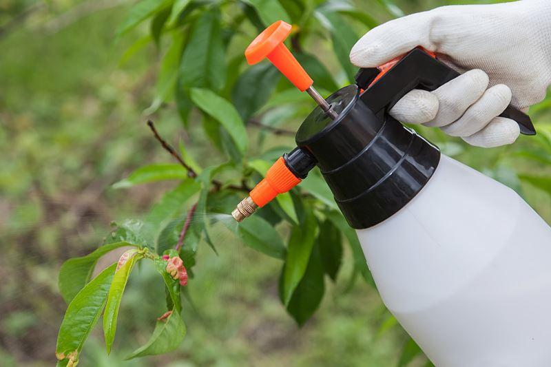 Fungicydy – środek chroniący przed grzybami – rodzaje, zastosowanie, ceny 2