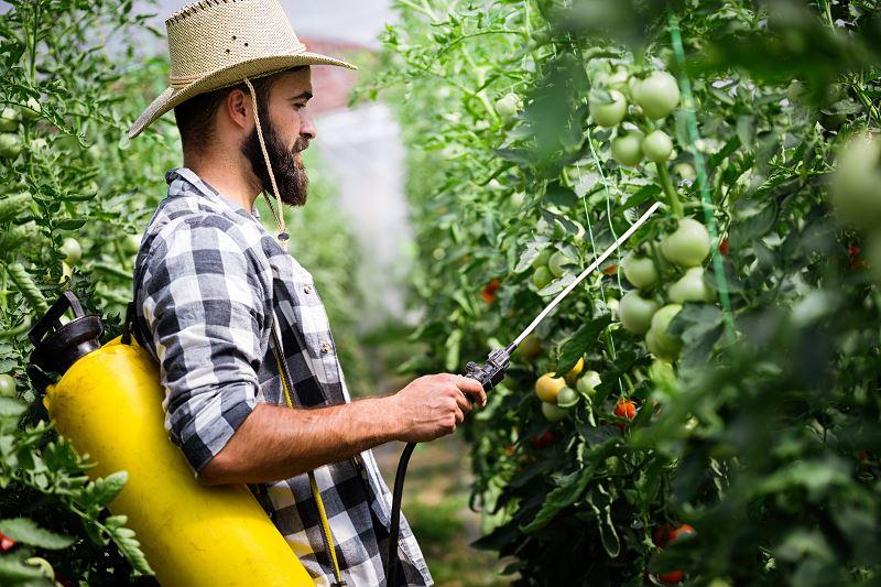 Opryskiwacze ogrodowe - rodzaje, ceny, opinie użytkowników, co wybrać? 2