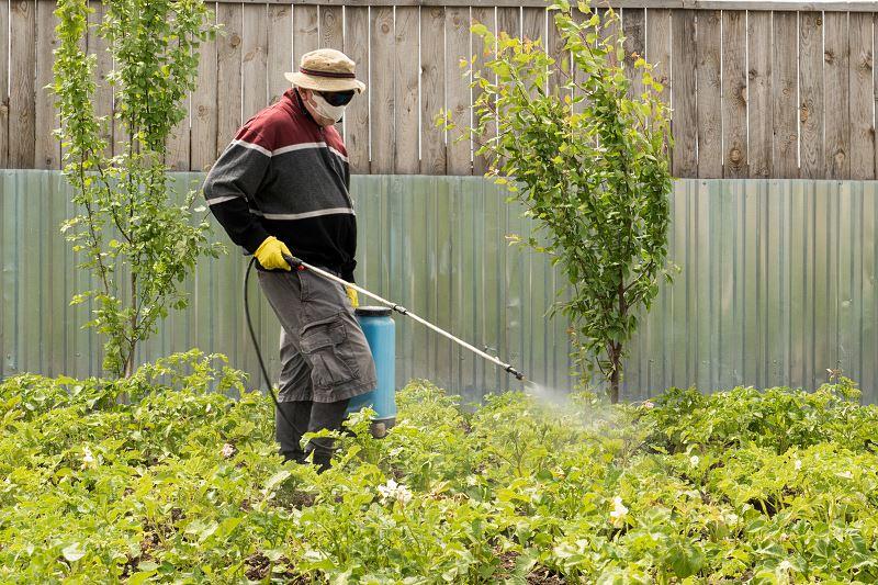 Opryskiwacze sadownicze - rodzaje, opinie, ceny, polecane modele 2