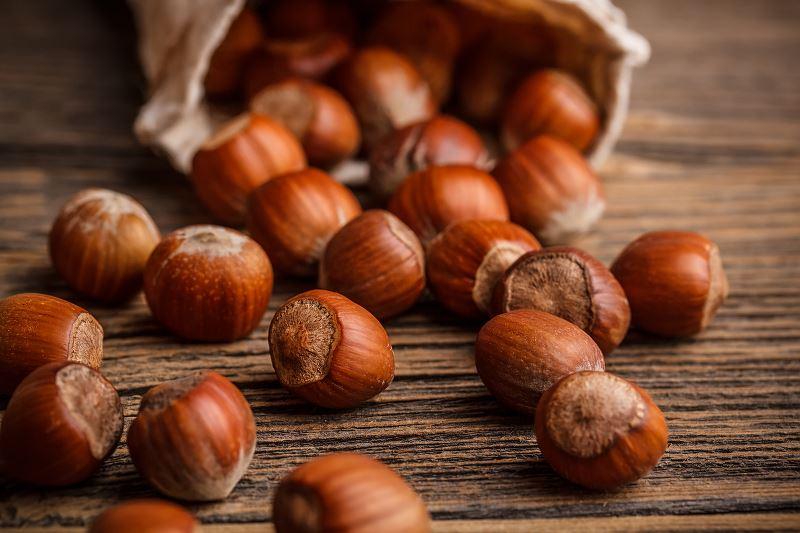 Orzech laskowy - uprawa, sadzenie leszczyny, pielęgnacja i inne porady 3