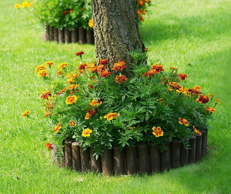 Palisady ogrodowe betonowe - cena, wymiary, montaż, układanie 2