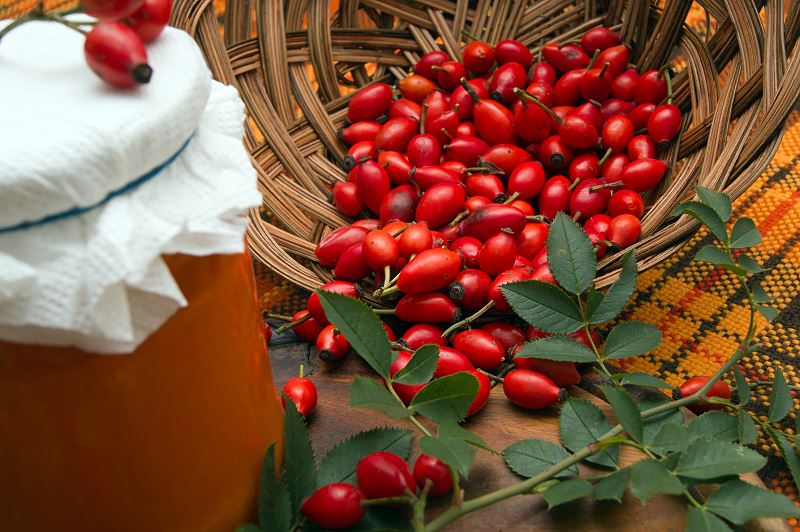 Przetwory z dzikiej róży - najlepsze przepisy i pomysły 2