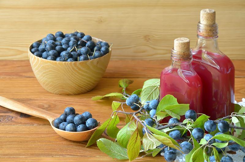 Śliwa tarnina - zastosowanie owocu tarniny, najlepsze przetwory, soki i nalewka z tarniny 2