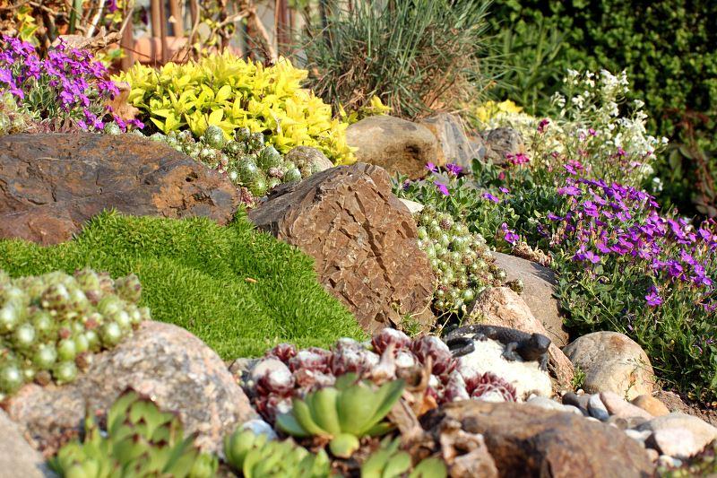 Skalniaki przed domem i w ogrodzie - pomysły, inspiracje, zdjęcia 2