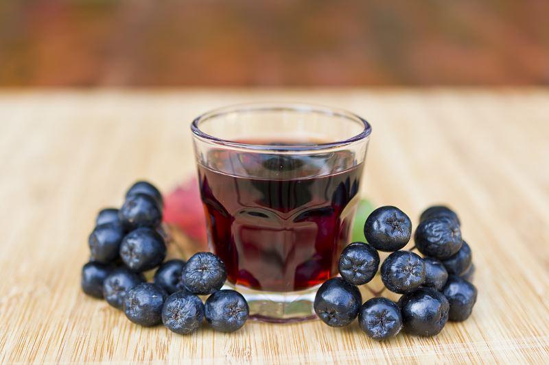 Aronia czarna - uprawa, pielęgnacja, właściwości lecznicze owoców aronii 3