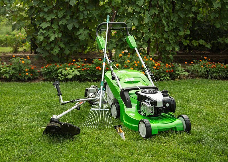 Wertykulacja trawnika – cena, terminy i inne porady 2