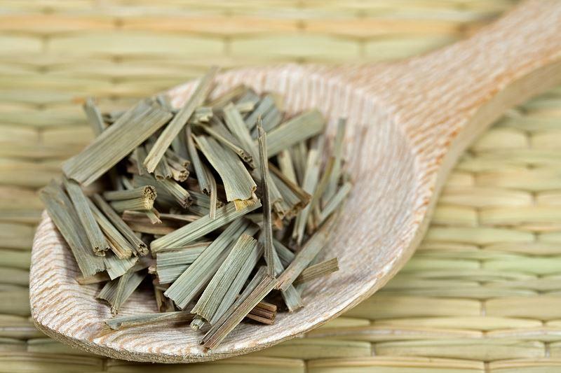 Trawa cytrynowa (palczatka cytrynowa) - uprawa, sadzenie, pielęgnacja, zastosowanie 2