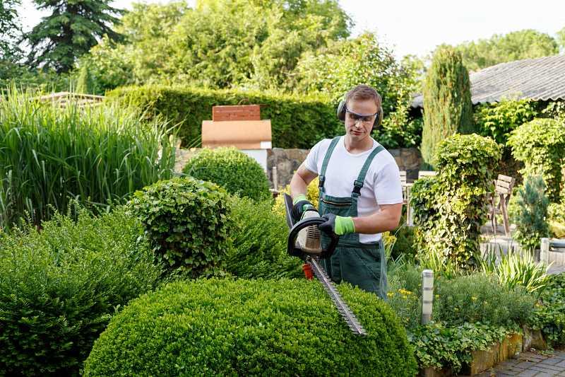 Cennik pielęgnacji i opieki nad ogrodami