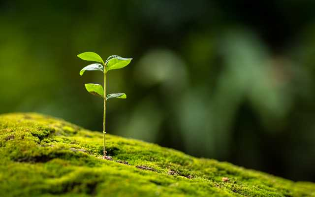 Z ekologią na Ty - mądra gospodarka odpadami
