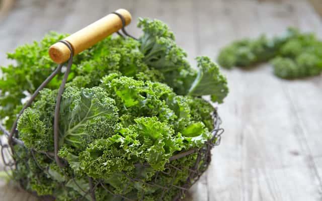 Jarmuż - odmiany, uprawa, pielęgnacja, wartości odżywcze, zastosowanie w kuchni