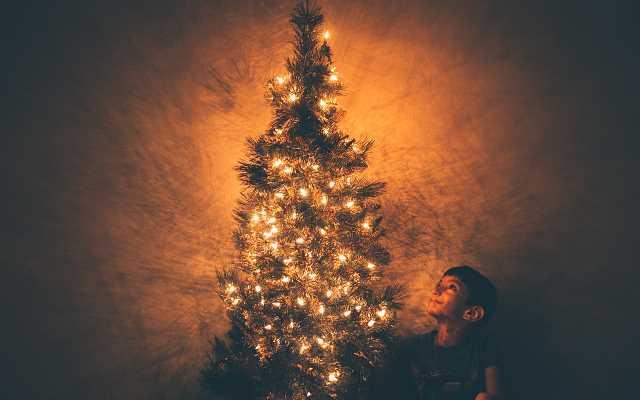Sztuczna choinka na pniu – idealne drzewko świąteczne