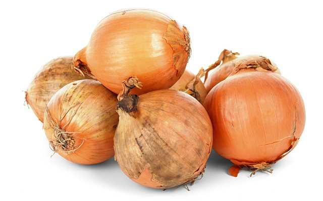 Kiedy i jak sadzić cebulę w ogrodzie?