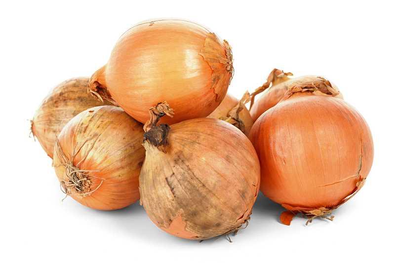 Kiedy sadzić cebulę?