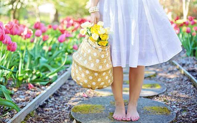 Kiedy siać kwiaty? Poznaj niezbędnik wiedzy domowego ogrodnika!