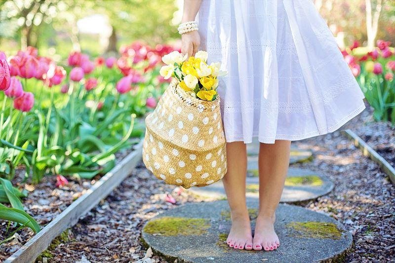 Kiedy siać kwiaty w ogrodzie?