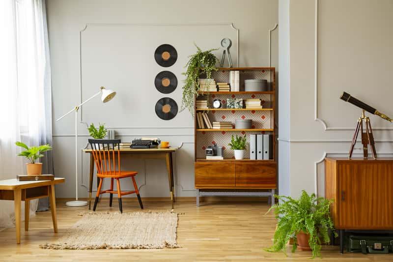 Kwiaty doniczkowe cieniolubne w mieszkaniu i na balkonie - wybieramy najlepsze