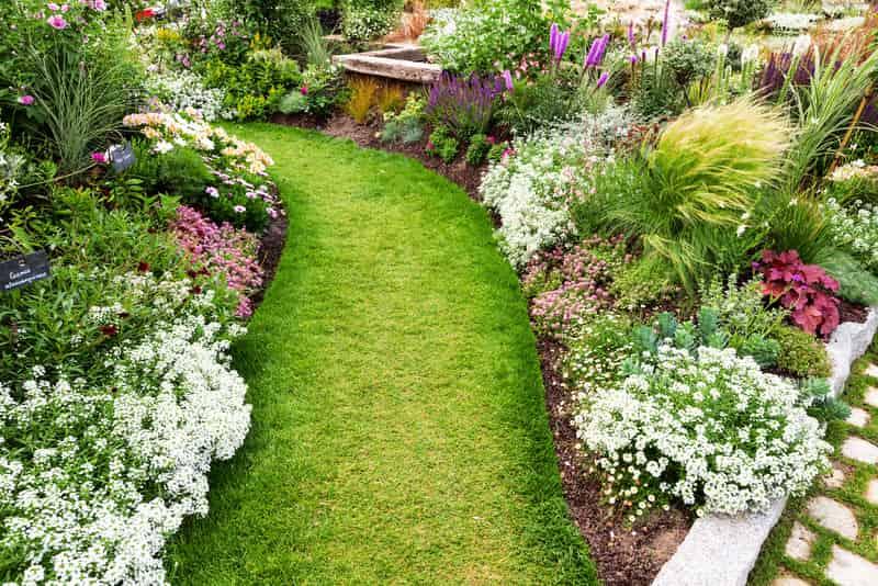 Pięknie zaaranżowany ogród z kwiatami