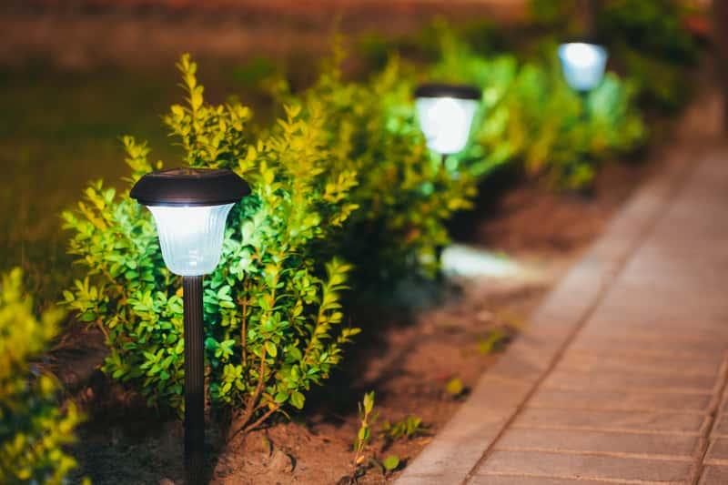 Lampa solarna w ogrodzie