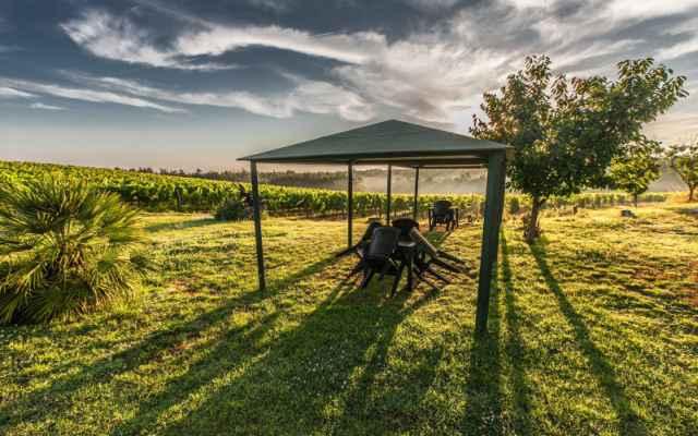 Luksusowy pawilon czy najprostszy namiot? Wybieramy idealny namiot ogrodowy!