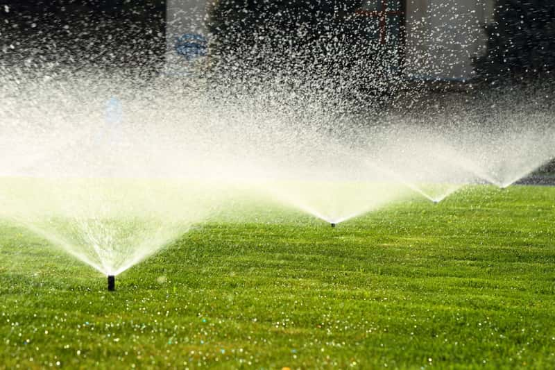 Nawadnianie trawnika krok po kroku - najlepsze systemy, ceny, porady