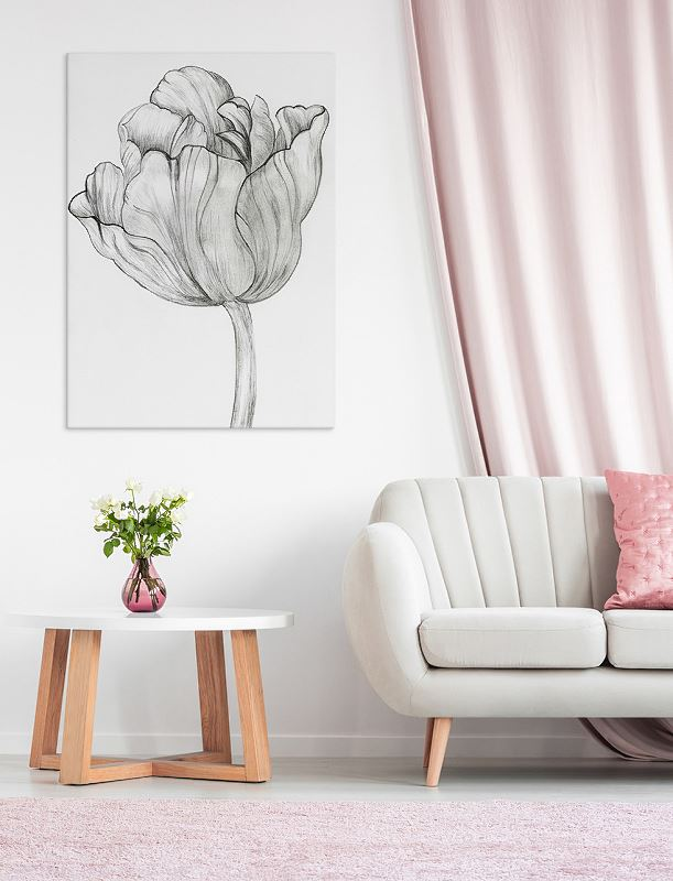 Kwiaty - tulipan