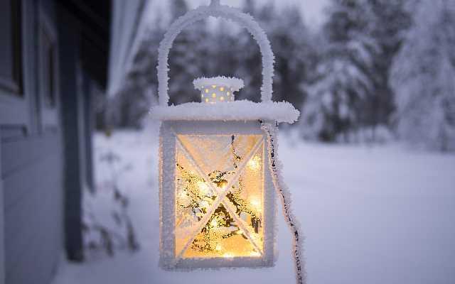 7 sposobów, by cieszyć się swoim ogrodem również zimą