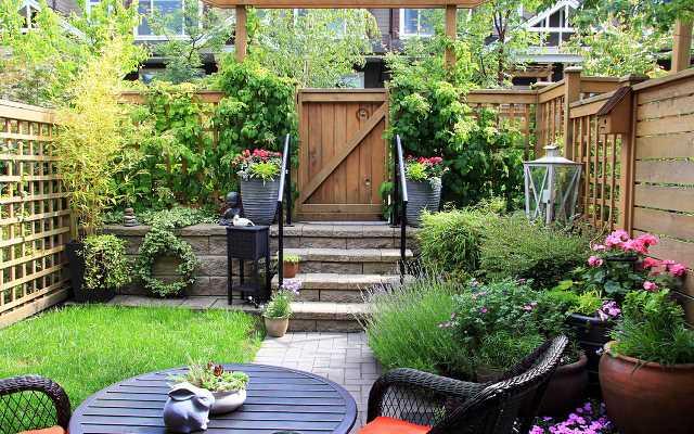 Najlepsze rośliny do ogródka w zabudowie szeregowej