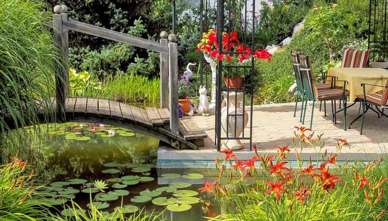Lilie ogrodowe – sadzenie, uprawa, pielęgnacja, wymagania porady
