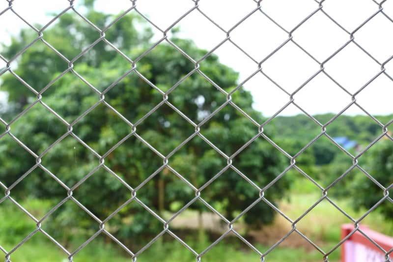 Siatka druciana jako ogrodzenie domu