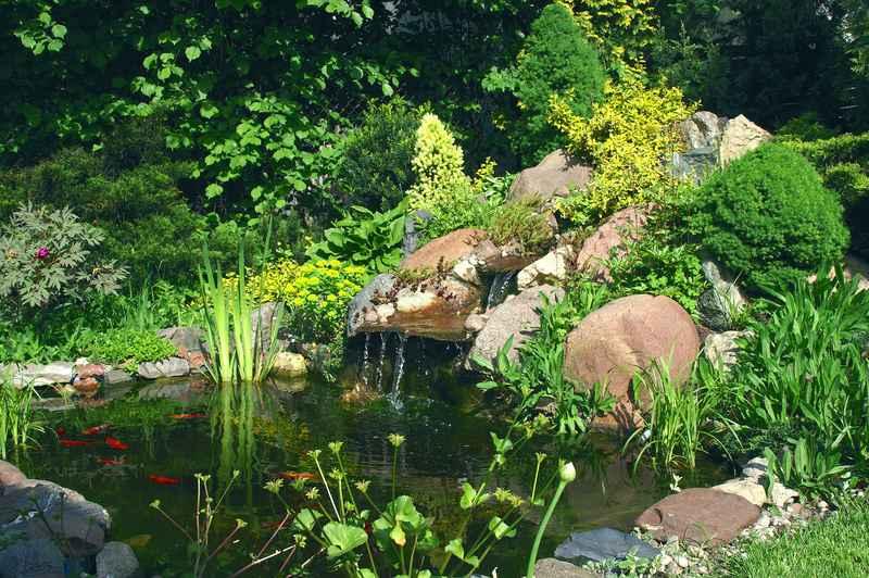 Piekny skalniak ogrodowy w okresie kwitnienia