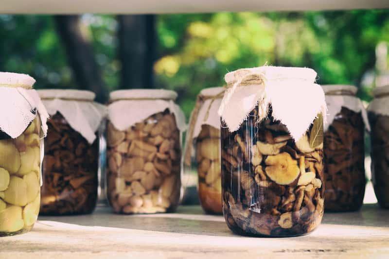 5 najlepszych przepisów na grzyby marynowane - sprawdź je!