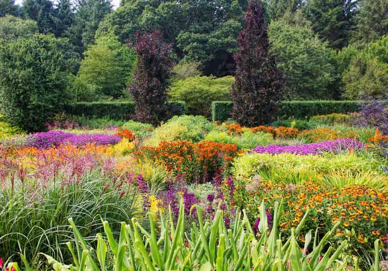 Pięknie zaaranżowany ogród