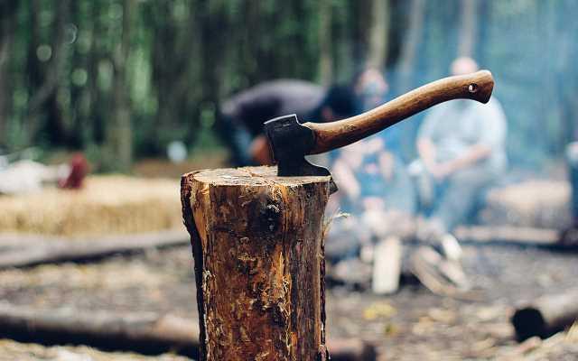 Jakie narzędzia pomogą okiełznać drewno?