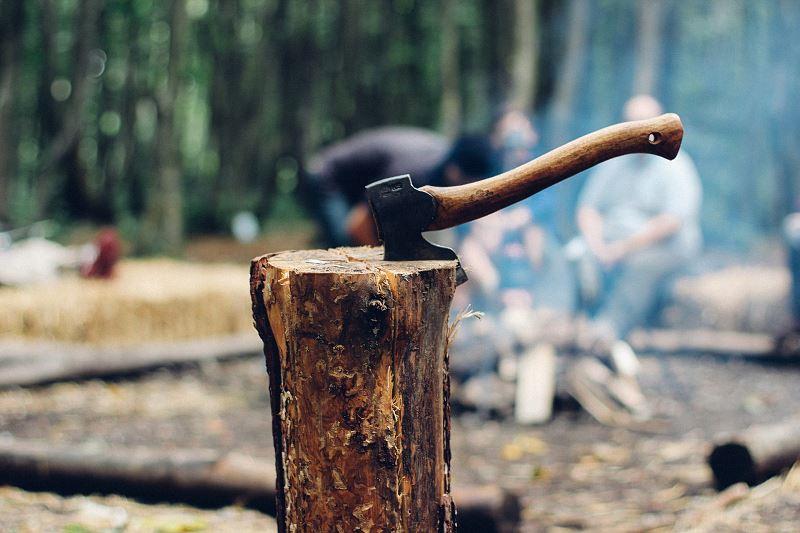Siekierka wbita w pniaku drewna