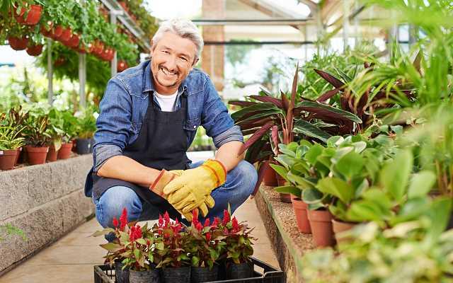 Uznany sklep ogrodniczy online