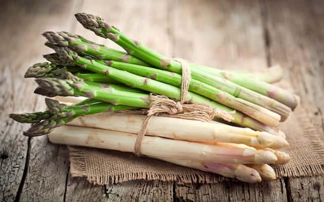 Szparag lekarski w ogrodzie – sadzenie, uprawa, pielęgnacja, wymagania, porady