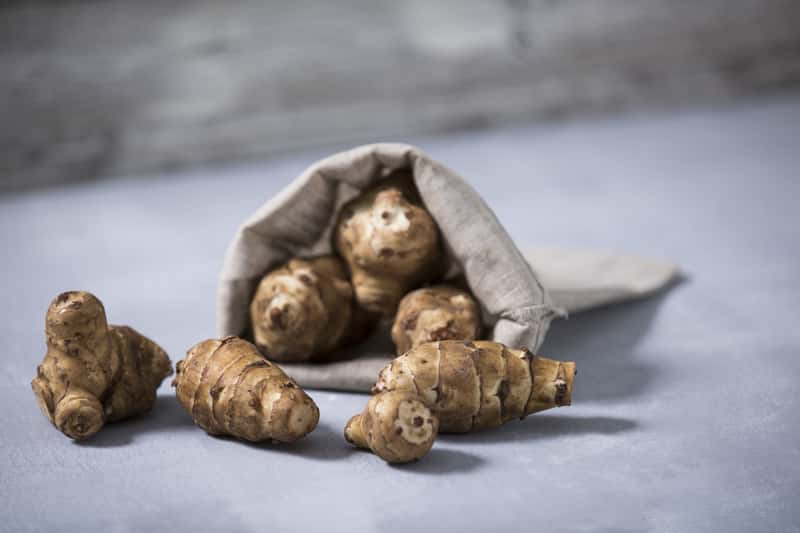 Topinambur, czyli inaczej nazywany słonecznik bulwiasty w jutowej torbie na stole. Uprawa topinamburu jest możliwa w przydomowym ogródku.