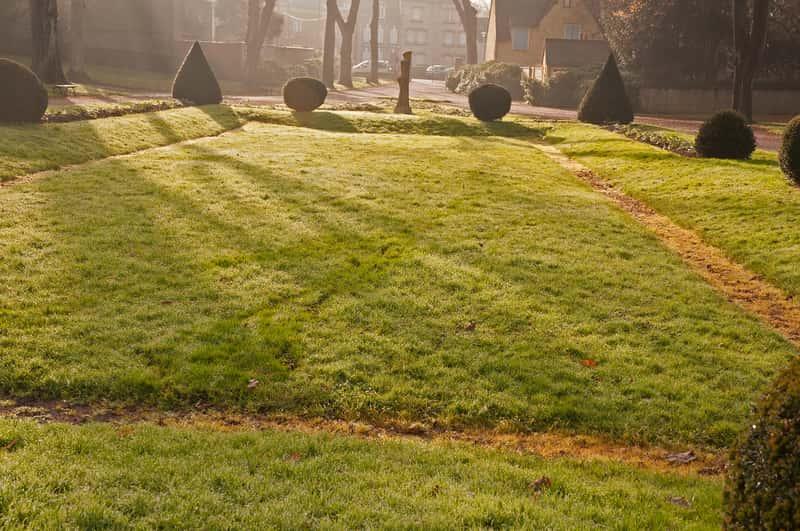Trawnik po zimie w pierwszym wiosennym słońcu, który wymaga zabiegu, jakim jest rekultywacja trawnika po zimie