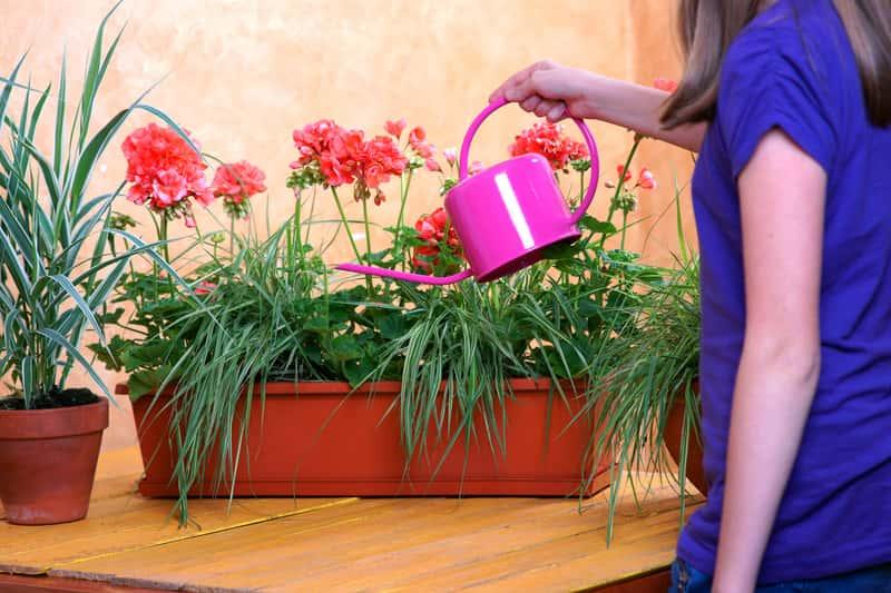 Kobieta podlewająca kwiaty na balkonie