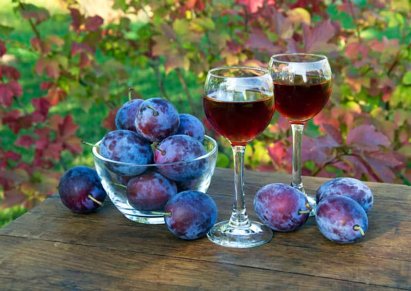 Wino śliwkowe - sprawdzone przepisy jak zrobić wino ze śliwek krok po kroku