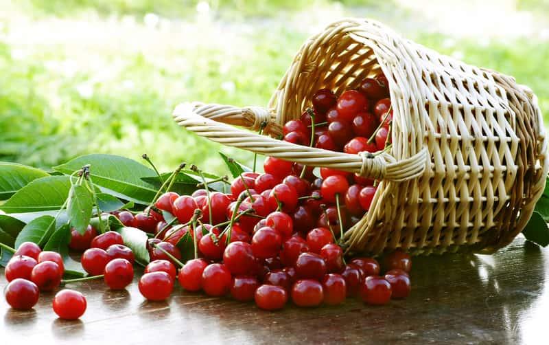 Kompot z wiśni - najlepsze przepisy krok po kroku - sprawdź je!