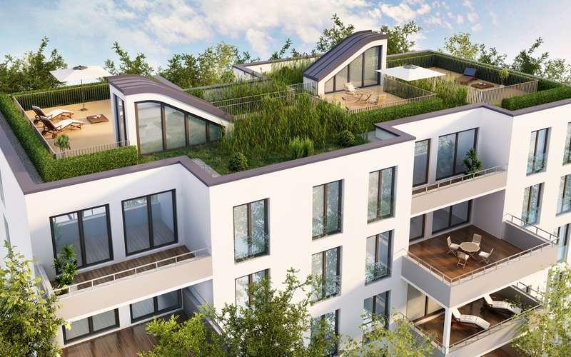 Projekt tarasu z roślinami na dachu