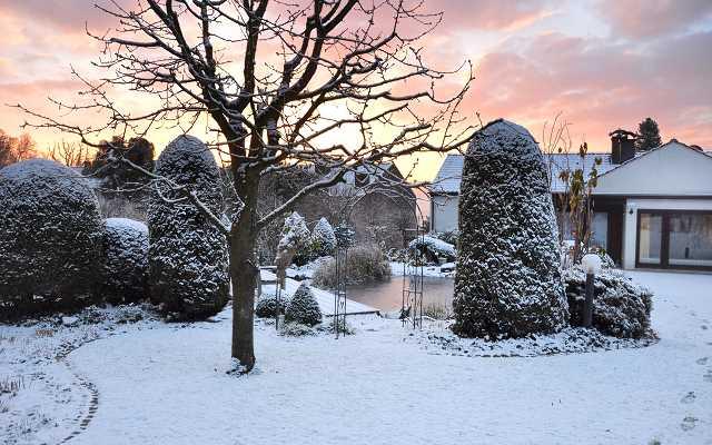 Jak dbać o ogród zimą? Kilka przydatnych wskazówek