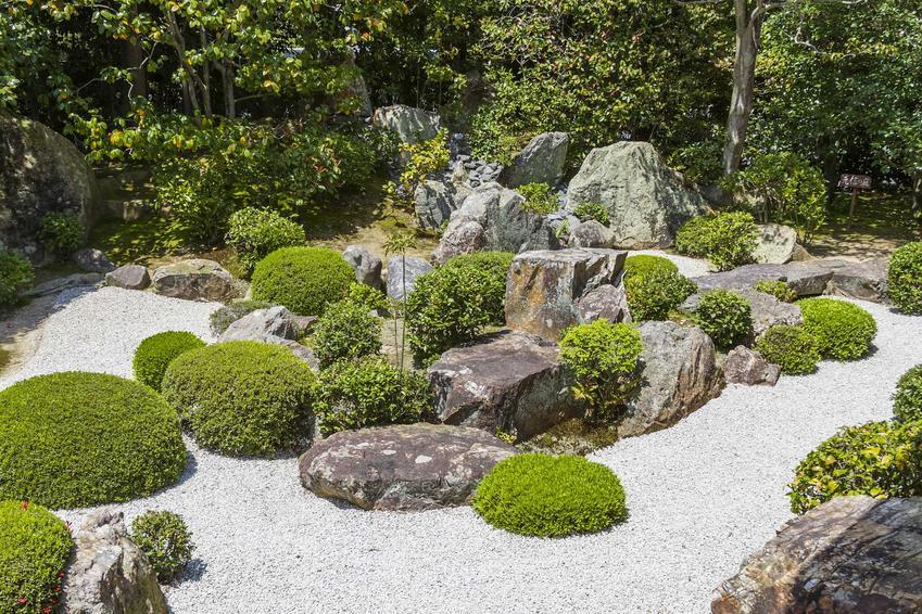 Skalniaki w ogrodzie to świetne rozwiązanie. Można je zrobić z kamieni, budowa krok po kroku nie jest trudna, można zrobić to samodzielnie.