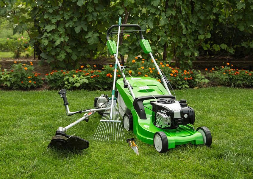 Wertykulator do trawnika umożliwia zrobienia bardzo intensywnego napowietrzenia trawniaka po zimie. Pielęgnacja wiosną to najważniejszy element gwarantujący wzrost